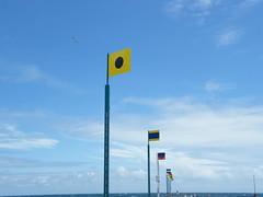 Stiff Flags