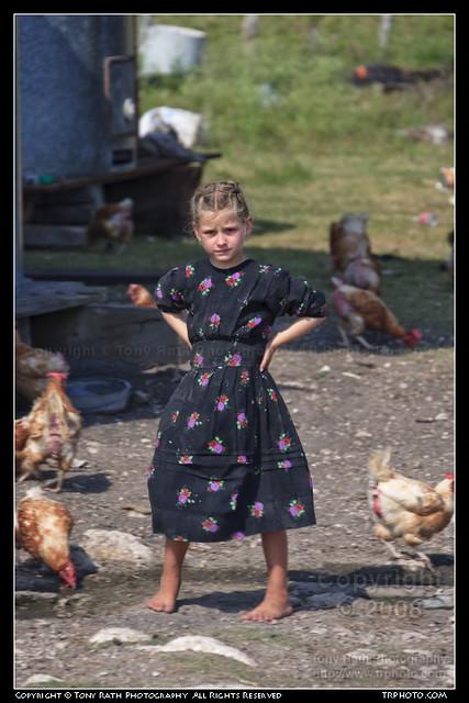 Mennonite girl flickr photo sharing for Mennonite singles