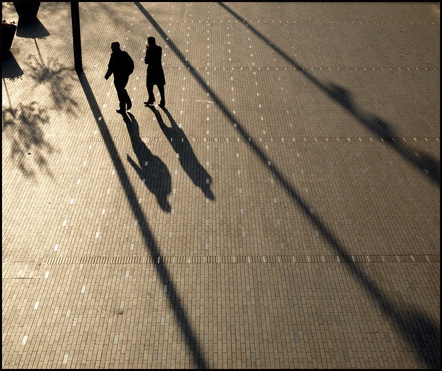 1605 Long Shadows #1