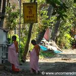 Buddhist Nuns - Rangoon, Burma