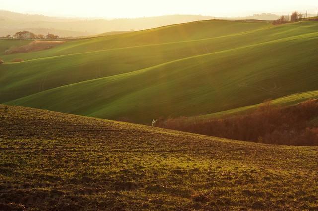 Colline in controluce montecarotto marche continua a for Piani di campagna in collina