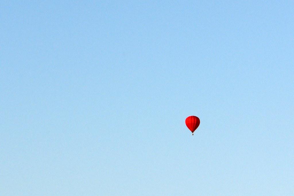 Red Loner