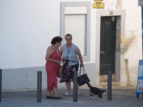 Mujer paseando gato