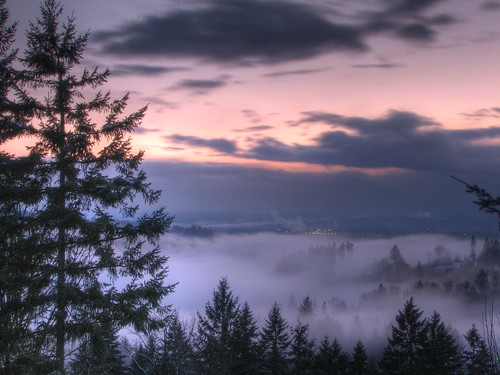 sunset fog forest woodland river foggy lewis valley wa hdr lewisriver washinton blueribbonwinner canons3