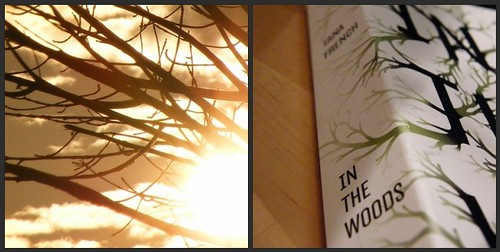In the Woods by Tana French (2008, PB) Buy 2 Get 1 Free!