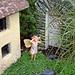 Fairy Gardens by linda yvonne