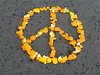 orangepeelpeace by elixir3x3