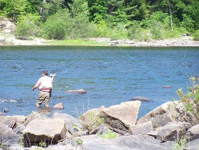 Fishing license concord nh free download programs for New hampshire fishing license
