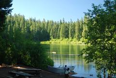 nwdc.com clear lake 454