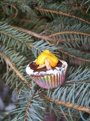 ChocoCinnamon Cupcake