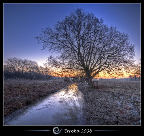 tree ice grass photoshop sunrise canon rebel frozen frost belgium belgique tripod belgië sigma naturereserve tips remote brook 1020mm erlend hdr mechelen cs3 3xp photomatix tonemapped tonemapping xti 400d vertorama hetbroek erroba robaye erlendrobaye alemdagqualityonlyclub vosplusbellesphotos