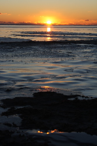 ice beach sunrise delaware delawarebay kentcounty dnerr kittshummock kentcountydelaware