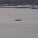 Plane crash into Hudson River