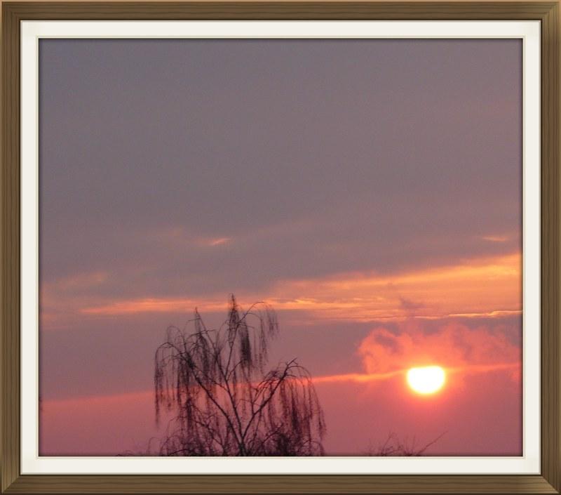 Sunrise Migros, Langendorf