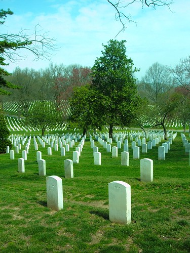 Endless Rows of Graves at Arlington National Cemetery