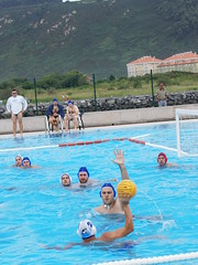swimming(0.0), water & ball sports(1.0), water polo(1.0), swimming pool(1.0), sports(1.0), recreation(1.0), outdoor recreation(1.0), leisure(1.0), water sport(1.0), ball game(1.0),
