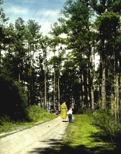 Woman and a child on a walk through a forest by State Library and Archives of Florida