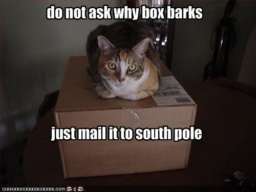 Barking Box