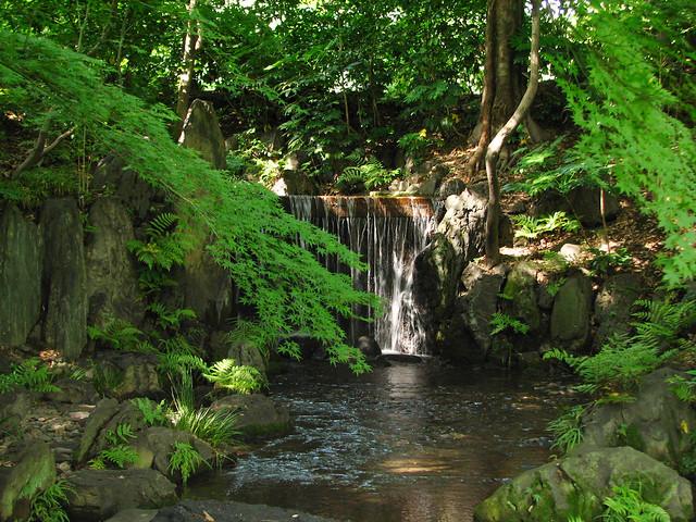 小石川後楽園-滝