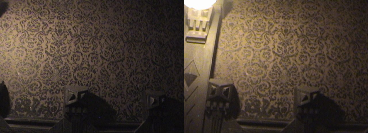 3D, Portrait Hall Gallery Wallpaper & Wainscoting, Haunted Mansion, New Orleans Square, Disneyland®, Anaheim, California, 2008.08.08 22:04