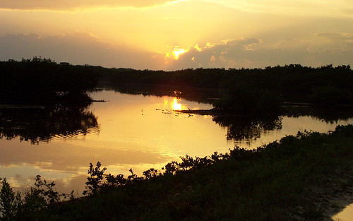 Sunset Ding Darling NWR