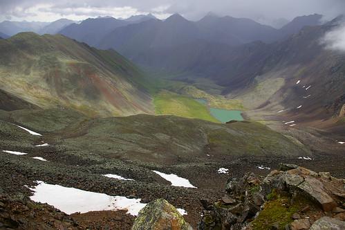 horses mountains buryatia shumak