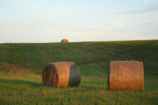 Two Bales and One on a Hill