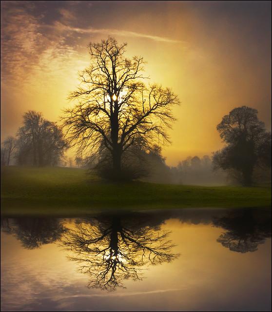 Beautiful World Flickr Photo Sharing