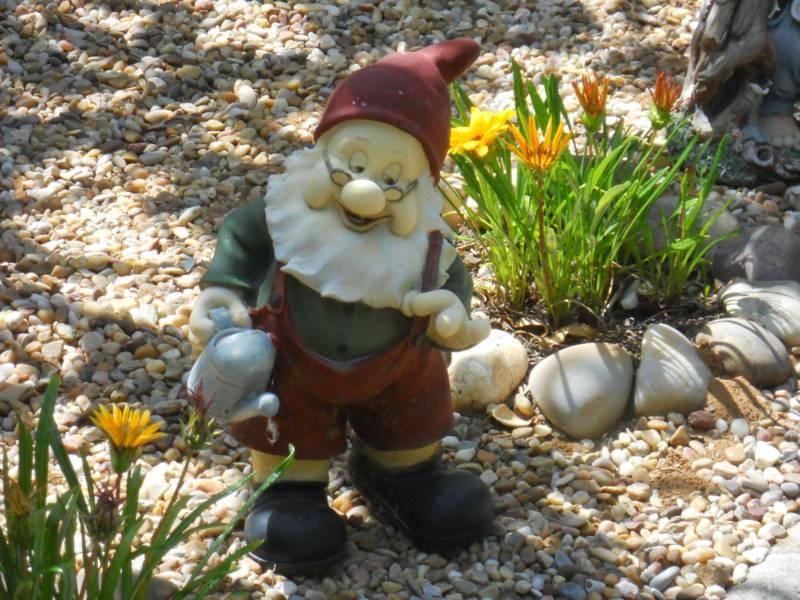 Jardineros en acción - Cómo inculcar la afición por las plantas a los niños
