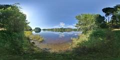 Aviemore: Spey Kincraig Scotland Equirectangular