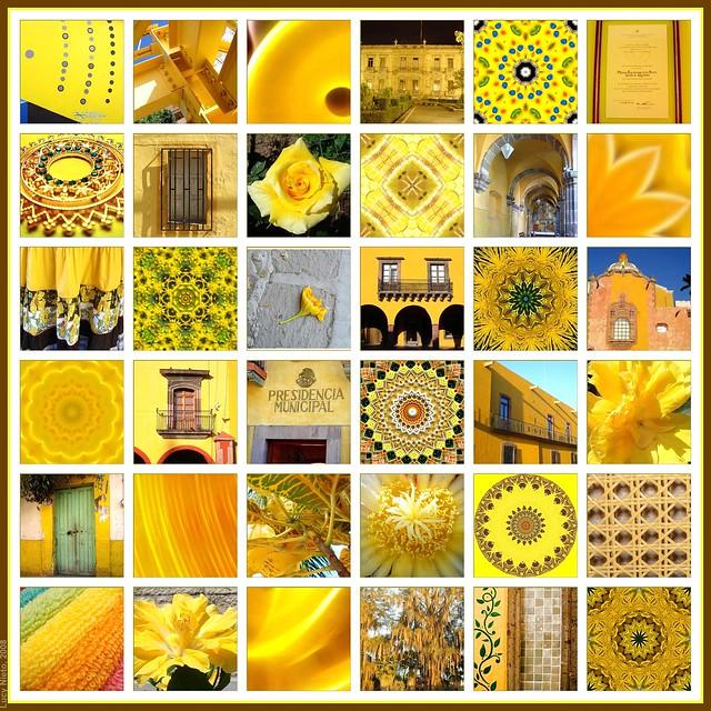 Mosaico Amarillo - México 2008
