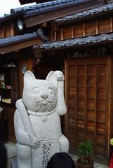 おかげ横丁の巨大猫