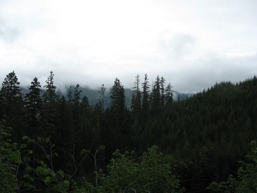 landscape hiking cascadiastatepark