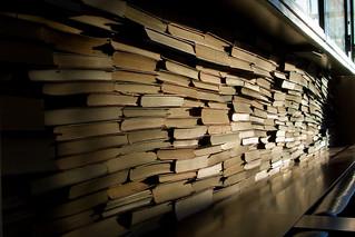 Unique Book in the Sea of Books