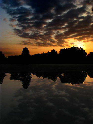morning trees usa cloud lake chicago reflection nature water colors silhouette sunrise illinois pond earth horizon tranquility calm lincolnshire east serene daybreak northernhemisphere cloudpatterns afterdawn centralus continentalus