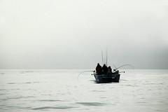 Queen Charlotte Islands, British Columbia, Canada, 2008