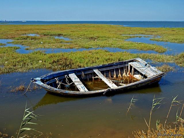 Barco Antigo / Old Boat
