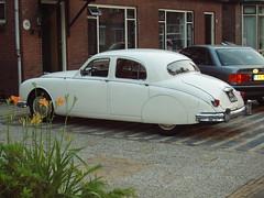 Jaguar various