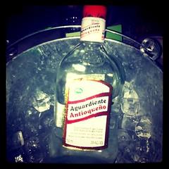 alcohol, distilled beverage, liqueur, drink, alcoholic beverage,
