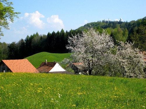May in Switzerland