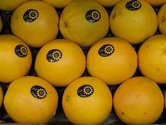 clementine, citrus, orange, valencia orange, vegetarian food, meyer lemon, produce, fruit, food, tangelo, sweet lemon, bitter orange,