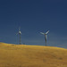 Small photo of Altamont Pass Wind Turbines