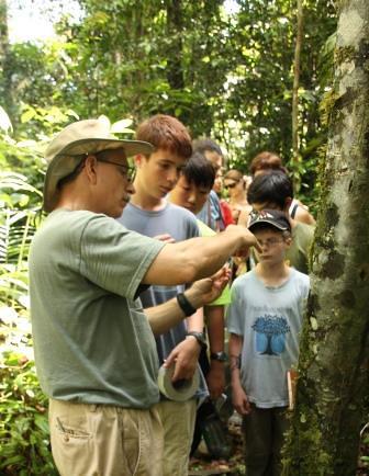 Orchid Bee Wranglers, Amazon Rainforest