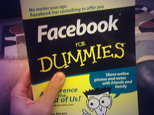 Facebook for Dummies, anyone?