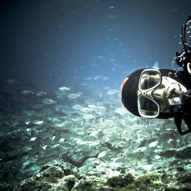 Hi...Summer Underwater