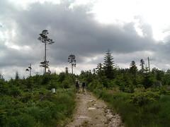 Badener Höhe