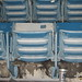 Numberless Seats