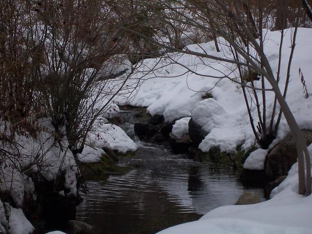 Idyllwildfarm Blog: Snow & Strawberry Creek, Idyllwild, CA, 12-24-08