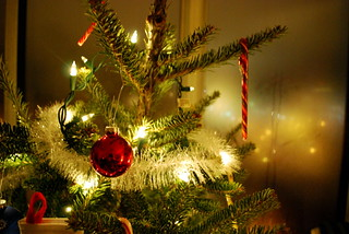 Eco Friendly Christmas Tree Tips