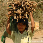 Burmese Girl Carrying Bundles of Wood - Inle Lake, Burma